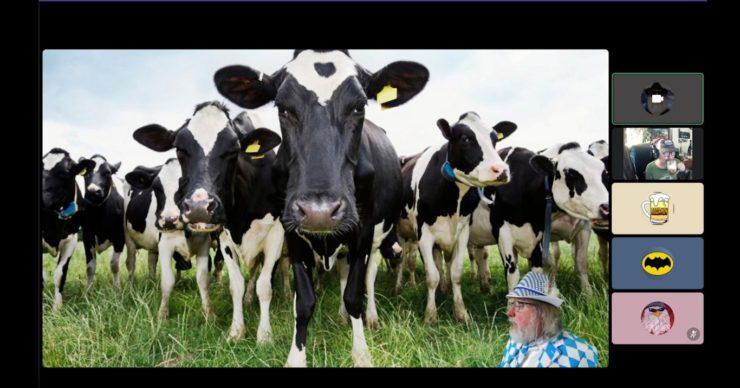 3BeerMen-007-Sept26-Cows